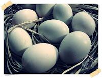 manfaat telur bebek