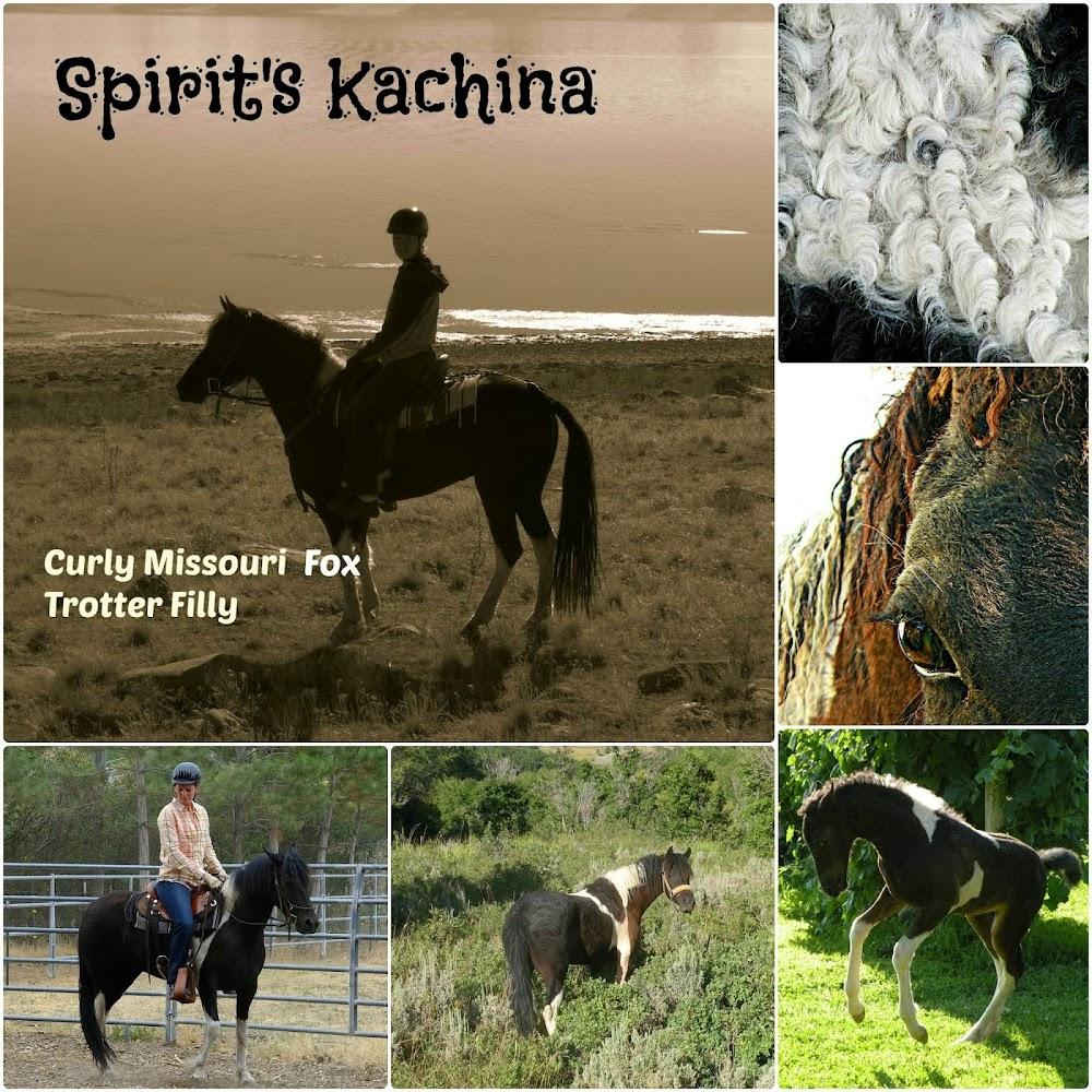 Spirit's Kachina