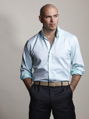 Pitbull Great looks