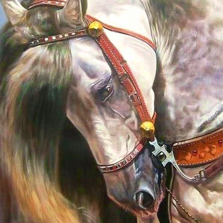 cuadros-cabeza-de-caballo