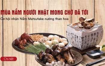 Thưởng thức nấm Matsutake nướng than hoa tại nhà hàng Ashima, nha hang lau nam, nha hang ngon, mon ngon ha noi, ha noi am thuc, am thuc Viet, dia chi am thuc, diem an uong ngon