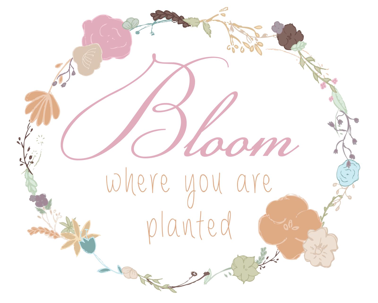 http://2.bp.blogspot.com/-dqyRLT1PuOA/UwfcdeHyVLI/AAAAAAAARjE/1bcSg52KPVY/s1600/Decor-Bloom-01.png