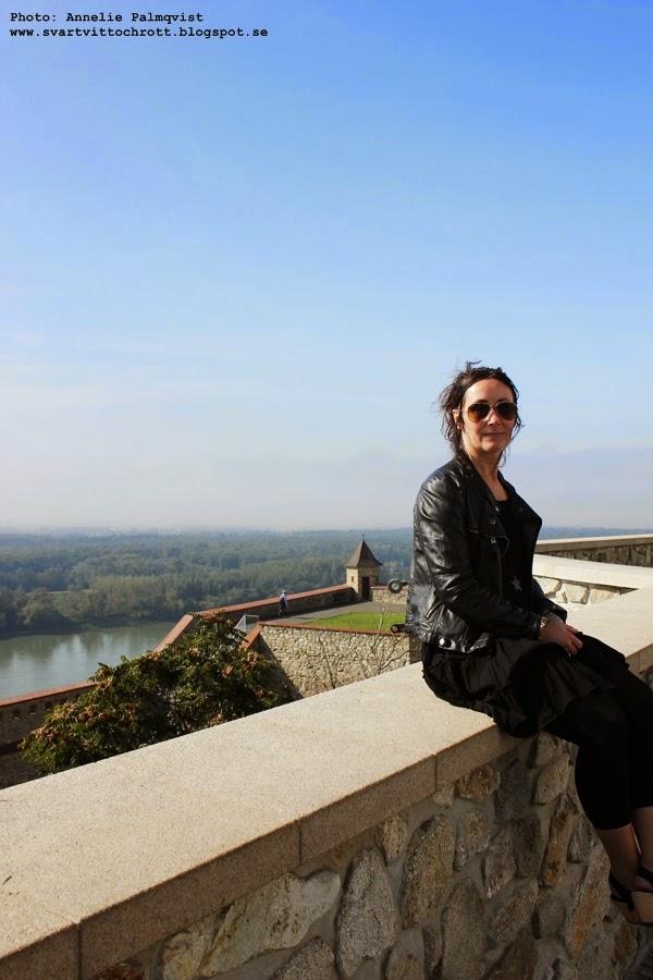 bratislava, utsikt, borg, bargen