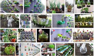 berkebun sayuran kreatif