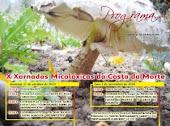 X XORNADAS MICOLÓXICAS DA COSTA DA MORTE- (2010)
