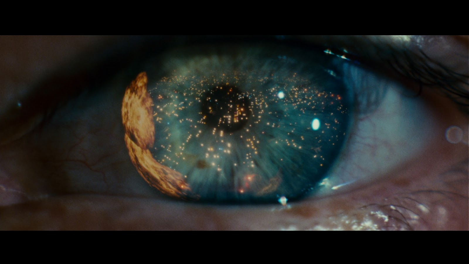 blade runners definition of human If you can't rewatch 'blade runner' before '2049,' read this  in a dystopian  future that raises questions about what it means to be human.
