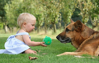 Baby And Dog are Best Friend