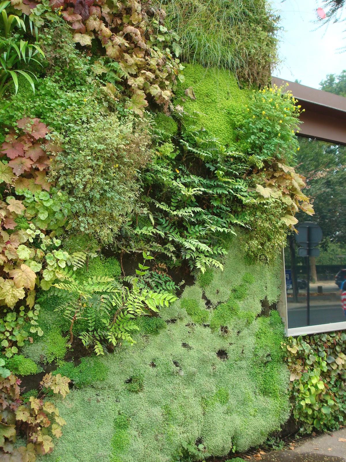fleuriste isabelle feuvrier le mur v g tal du mus e du quai branly. Black Bedroom Furniture Sets. Home Design Ideas