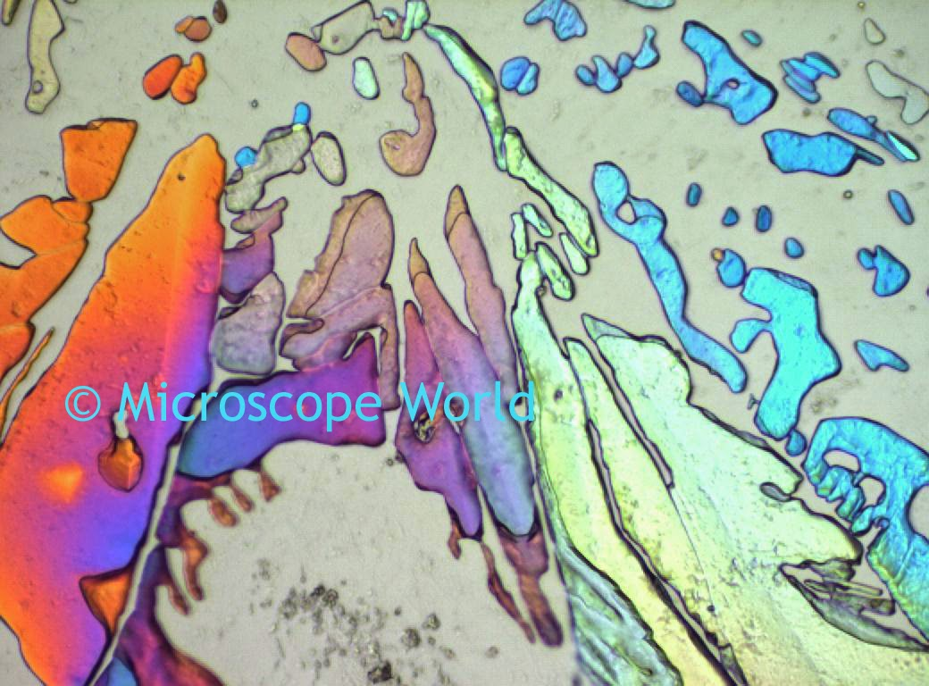 Sugar under a polarizing microscope at 200x.
