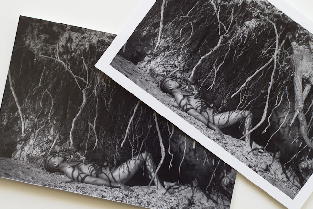 Silver Gelatin Print Review for Digital Images
