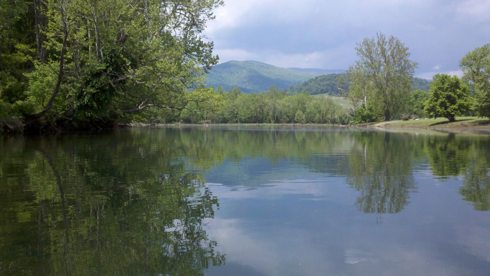 Tnvarmint watauga river information for Watauga river fishing