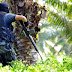 Lanun Sulu Kembali Mengganas, Seorang Anggota Polis Marin Maut Ditembak