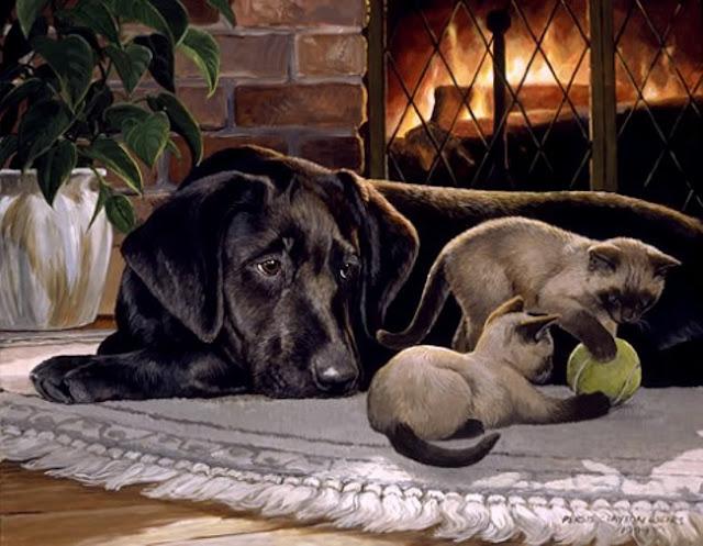 пёс и сиамские котята