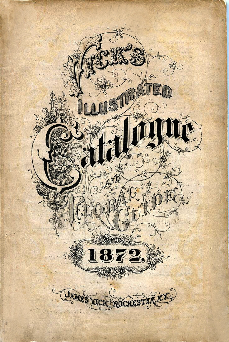 Catalog Cover