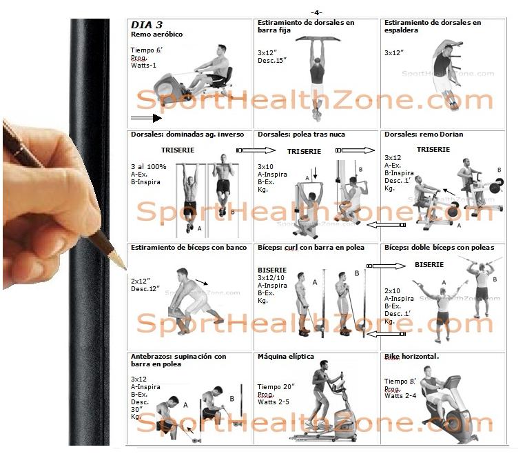 Rutinas de ejercicios entrenamiento fitness pesas caroldoey for Rutinas gimnasio
