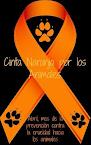 Cinta Naranja. Compártelo