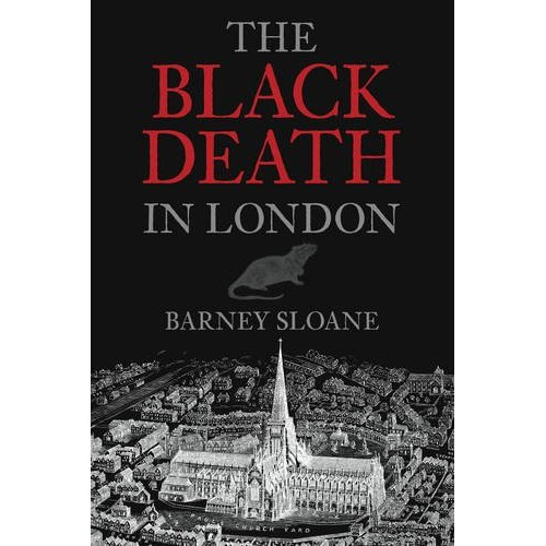 an analysis of the black death The black in black death more likely derives from the  statistical analysis of aids mortalities has turned up an intriguing connection between the diseases.