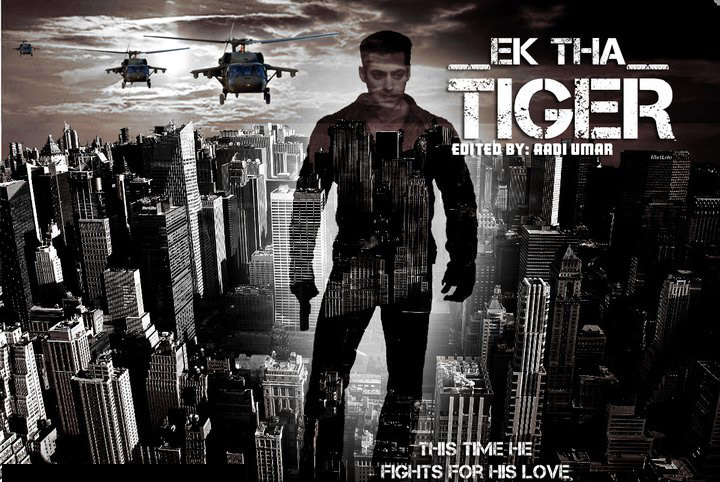 Salman Khan Hd Wallpaper Ek Tha Tiger Movie Wallpapers Download