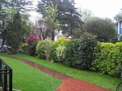Arte y jardiner a superficies verticales materiales - Setos de jardin ...