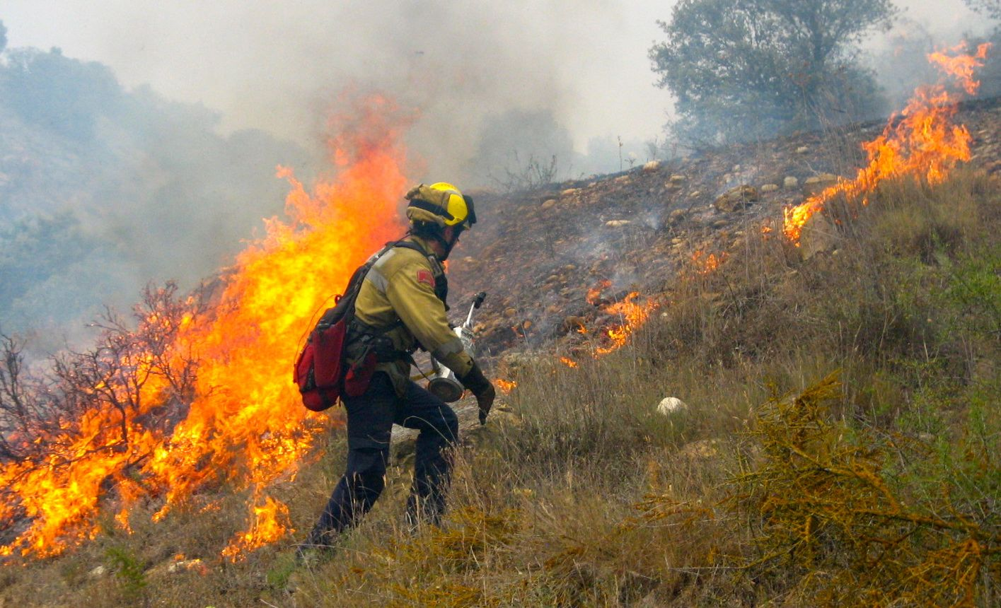 a narrative of my dream to be a forest wildland firefighter Federal officials investigate idaho wildfire us forest service wildland firefighter fatalities came from policy takes effect chasing a 'dream':.