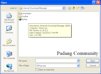 Serial number for idm 6.17 build 10134