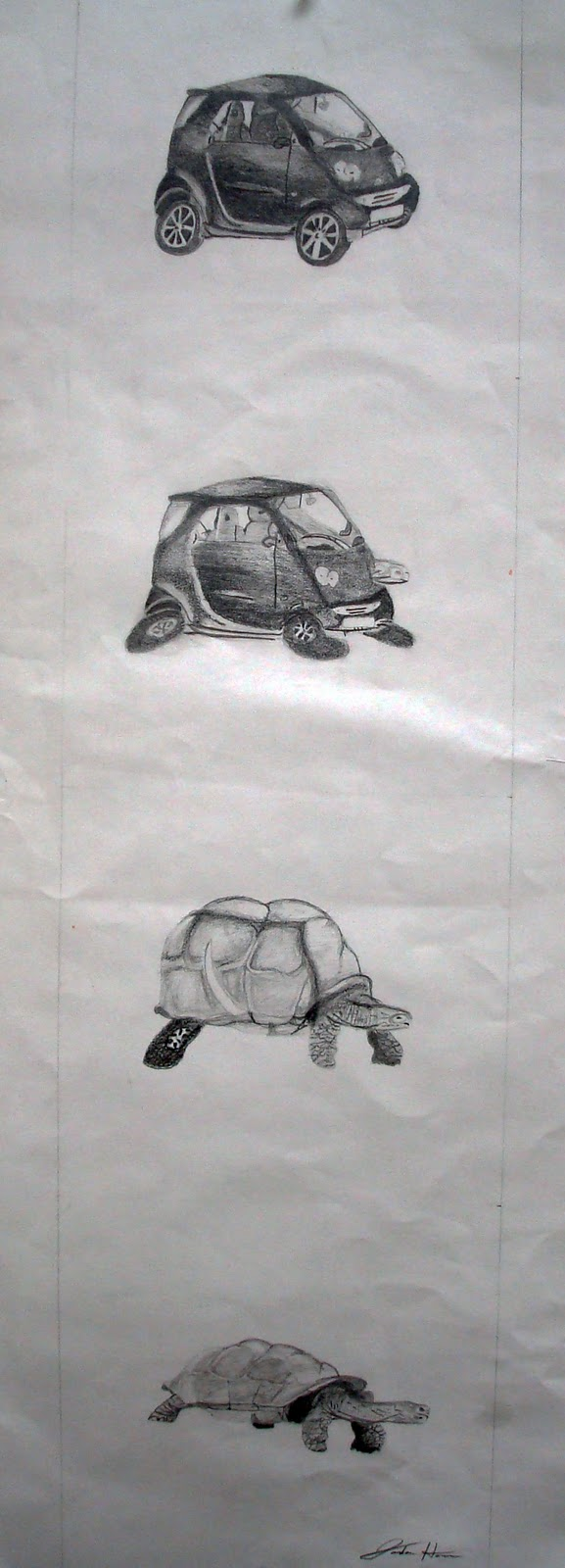 Art At Ohs  Metamorphosis Drawing