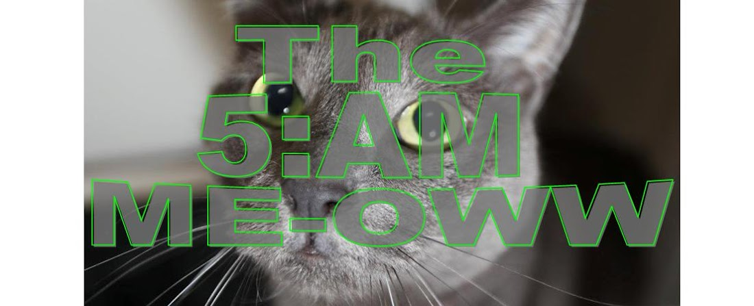 The 5:AM Meow