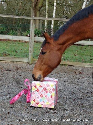 des cadeaux pour les chevaux - Cadeau Cheval