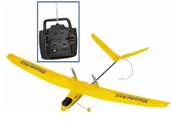 Yellow Bee electric RC plane Images