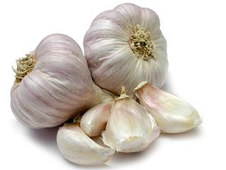 Khasiat bawang putih untuk peternakan ayam kampung