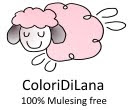 ColoriDiLanaShop