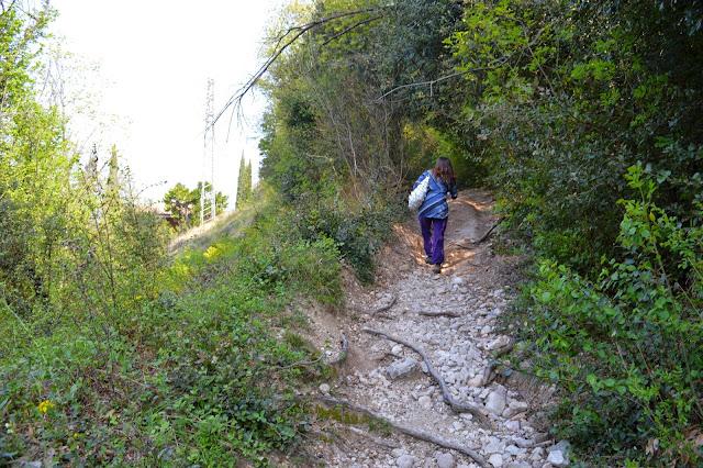 incisioni rupestri e monte luppia da punta san vigilio