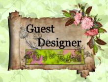 Vieraileva Designer 20.1.2015
