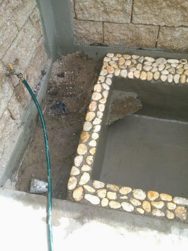 El estanque de mis tortugas la cascada for Estanques pequenos para tortugas