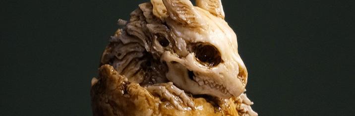 たまごドラゴン(骨)