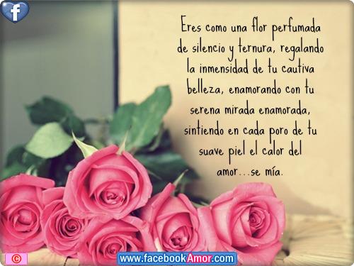 Imagenes De Ramos De Rosas Con Frases De Amistad - Las Flores Hablaran Por Mi Mensaje De Amistad YouTube