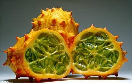 10+buah+paling+aneh+di+dunia,+Kiwano.jpg