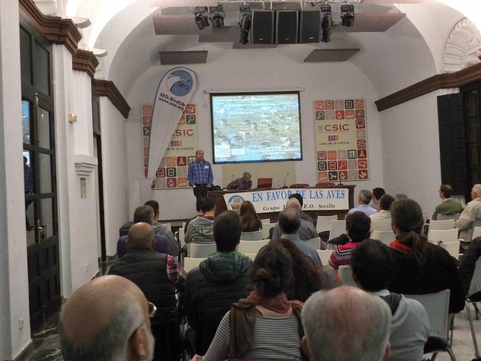 """Conferencia """"Invernada de los ánsares en Doñana"""". Por Manuel Máñez Rodríguez, en el ciclo Martes Ornitológicos que el Grupo Local SEO-Sevilla organizada en el museo Casa de la Ciencia de Sevilla"""