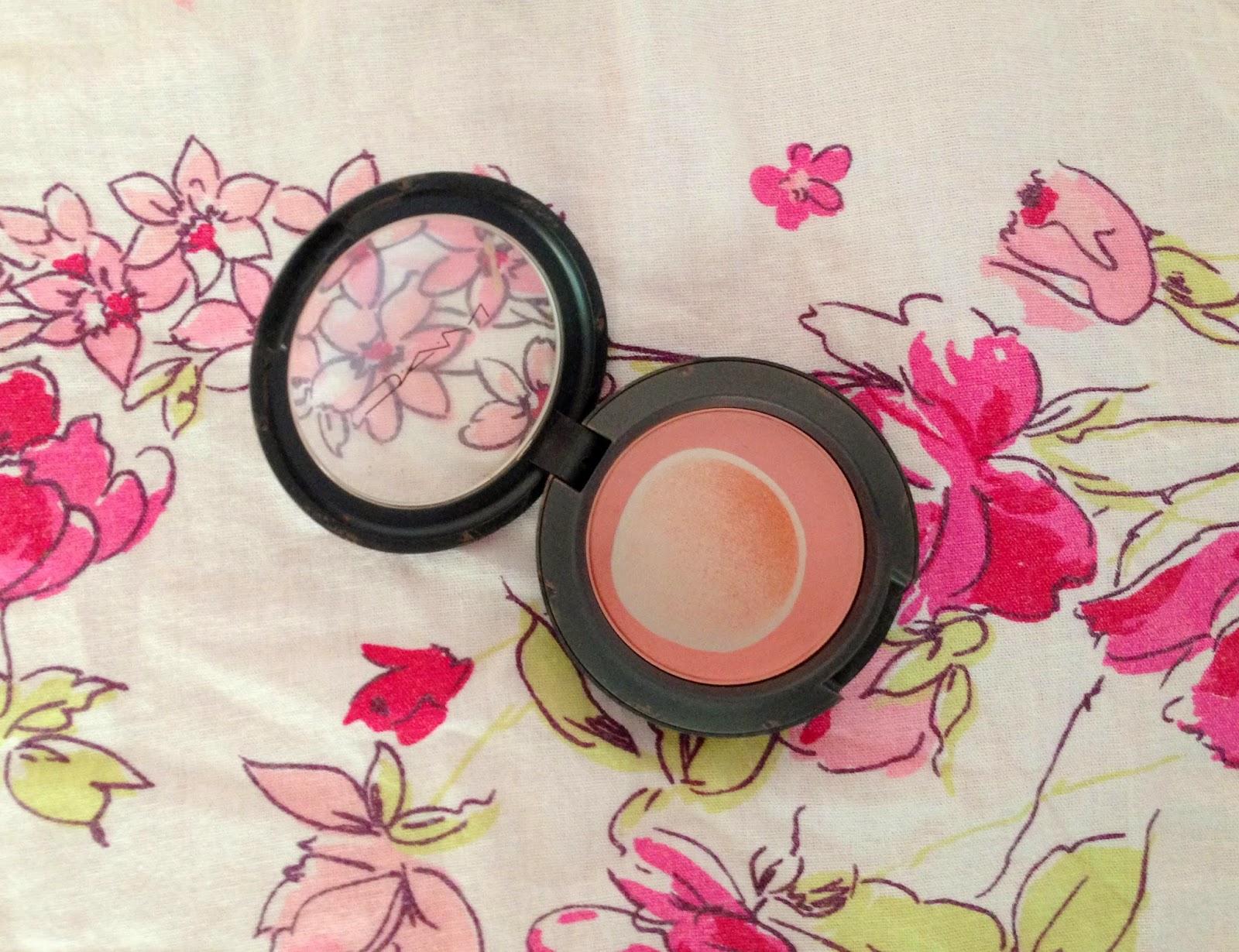 Letmecrossover_project_pan_ten_10_beauty_blog_products_mac_blush_mocha