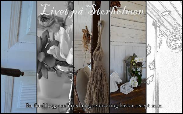 Livet på Storholmen...