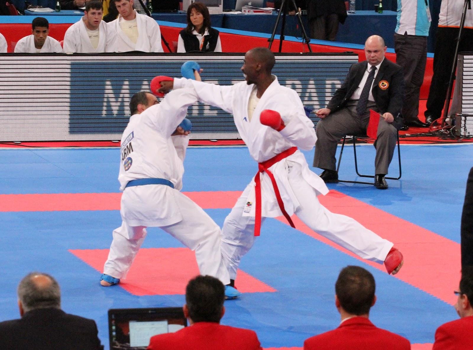 Taekwondo vs Karate