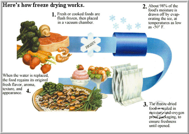 Food Preservation Freeze Drying Irradiation And Vacuum Packing