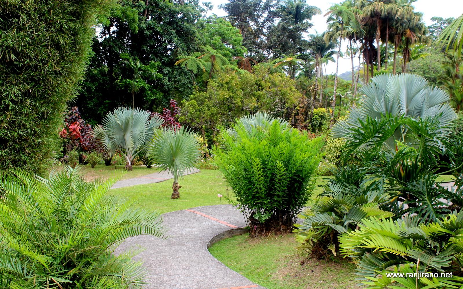 un jardin extraordinaire le jardin de balata en