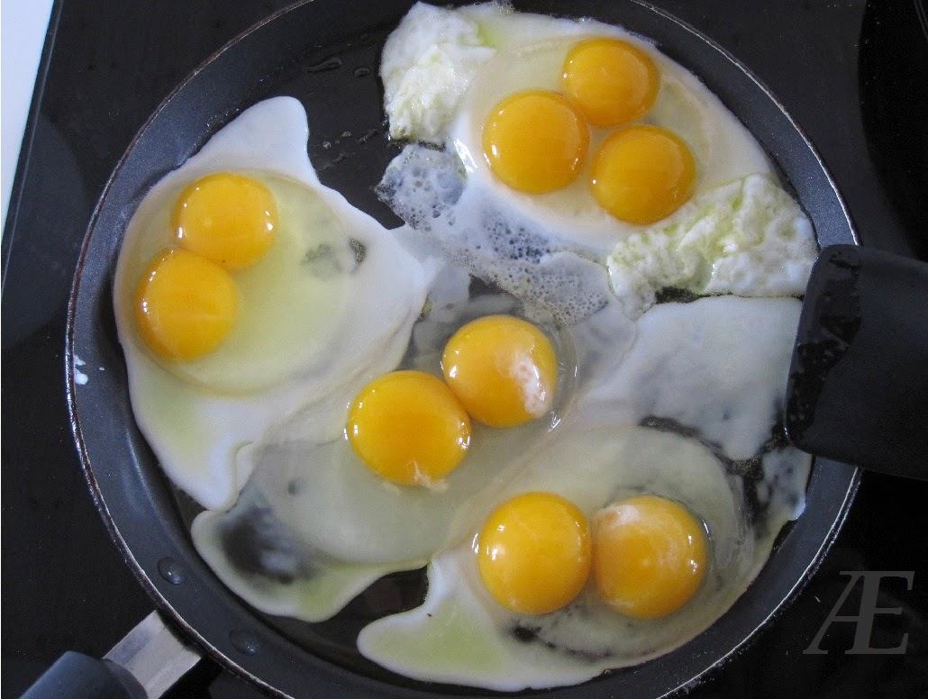 Grønlægger, grünleger, æg, flotte grønne, gigant, stort, store, dobbel, triple blomme, blommer, Spejlæg