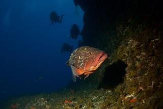 El Hierro. Islas Canarias. Vida a Bordo.