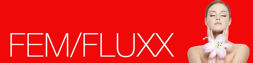 FEM/FLUXX