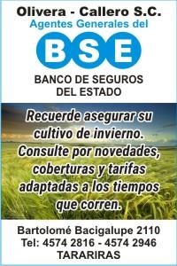 B.S.E.