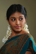 Anjali Beautiful Photos from SVSC-thumbnail-13