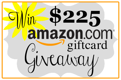 WIN: $225 Amazon gift card blog giveaway CreativeCynchronicity.com