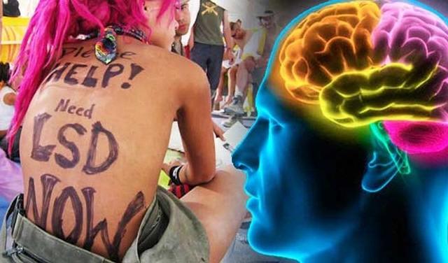 LSD: Ο ψυχεδελικός εγκέφαλος μοιάζει με του μωρού